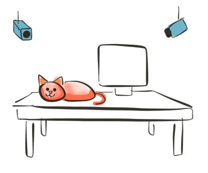 cat-virtual-home