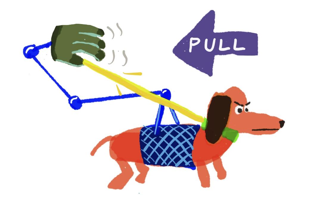 dog-backward