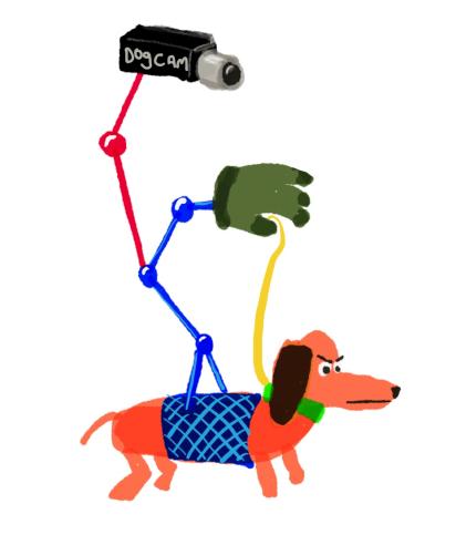 dog-cam
