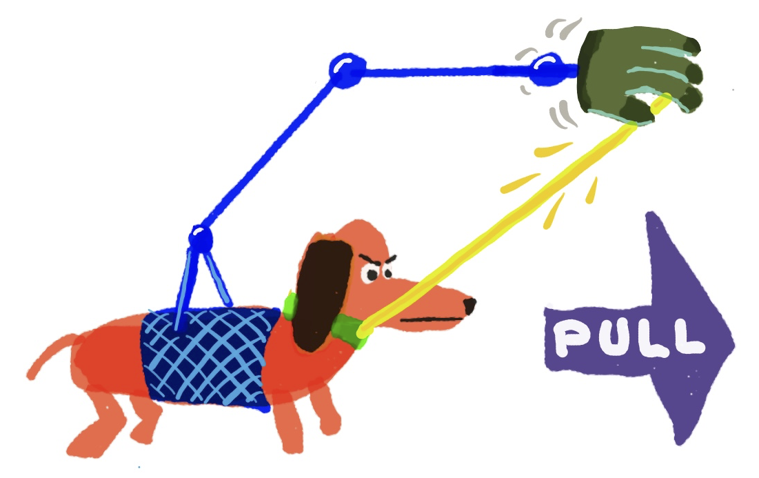 dog-forward