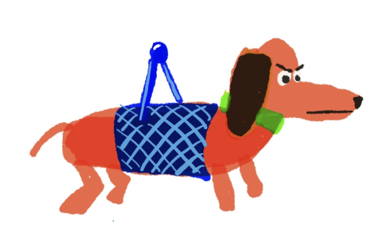 dog-harness