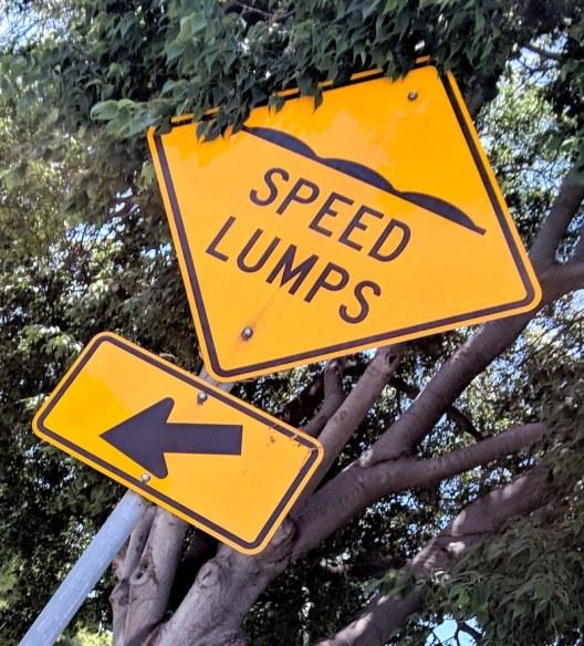 speed-lumps-0-small.jpg