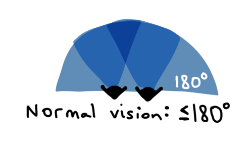 1-normal-vision-cone.png
