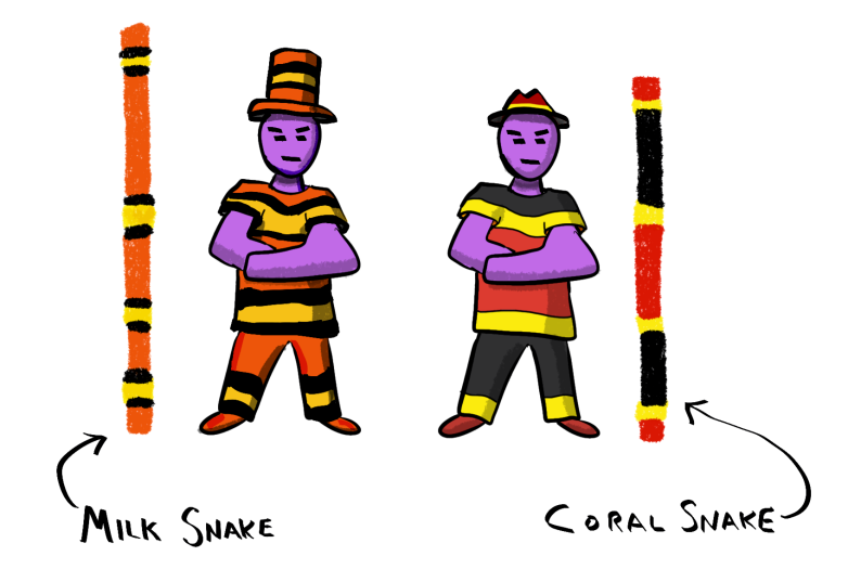 1-snake-gang-colors-annotated.png